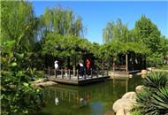 河东公园 蔚蓝轻暖芳菲染