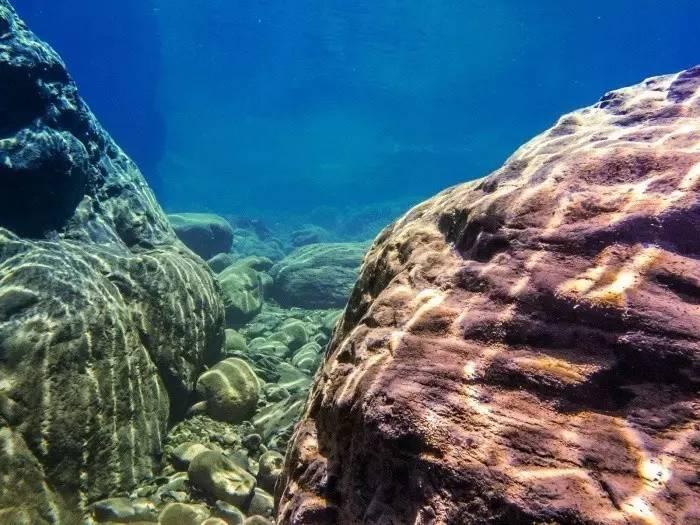 不一样的潜水体验