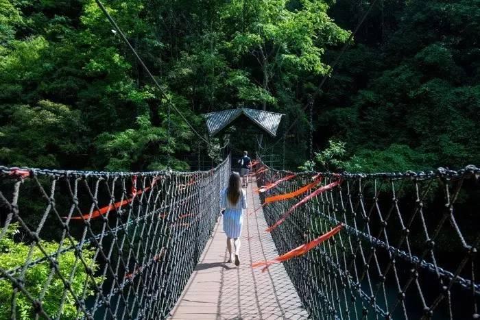 醉山野的特色——桥