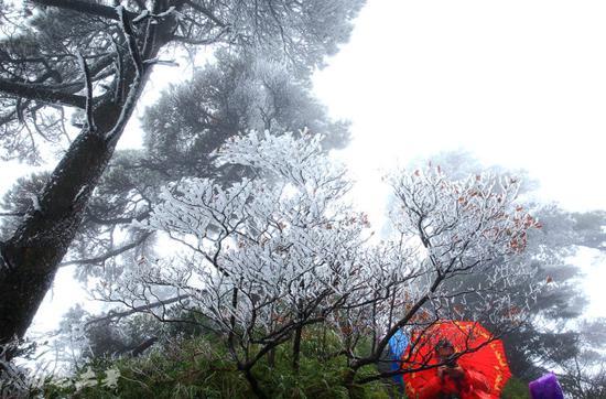 三清山,北纬30°最美的雾凇奇观