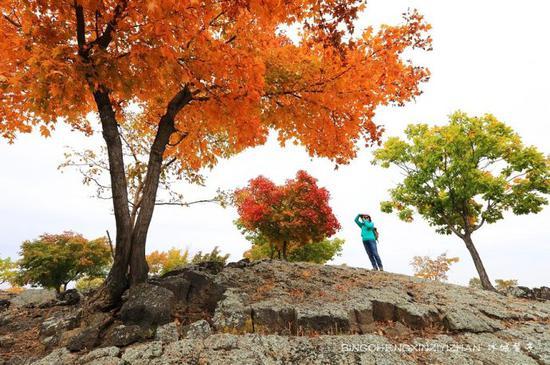 镜泊湖,火山熔岩上那片寂静怒放的秋艳
