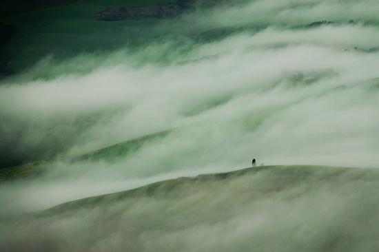 春风中的托斯卡纳原野,美到犯规