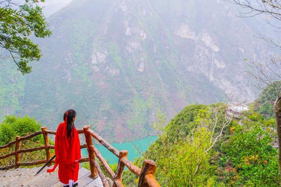 别的地下雪重庆巫山仿若秋天 这可能是今年最后一波醉美红叶邀你共赏