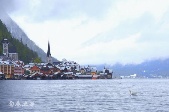 曾被国人复制的奥地利天鹅小镇