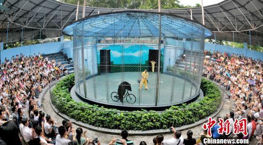 广州动物园动物行为展示馆从前进行动物表演(资料图)通讯员供图