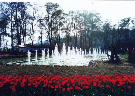 ▲南山植物园