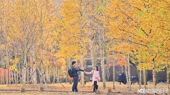 秋冬时节 歪果仁美女帅哥们的韩国特色游