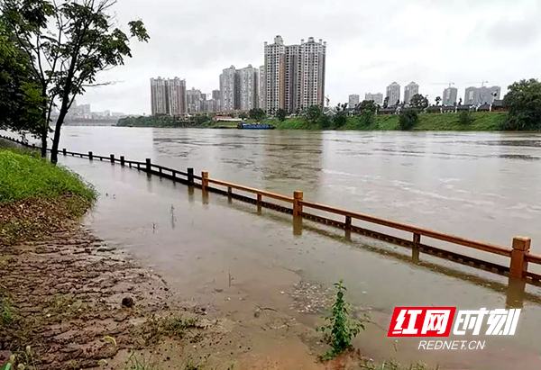 7月9日,江水已没及东洲岛亲水木栈道扶栏的顶部。衡阳市文化旅游广电体育局供图
