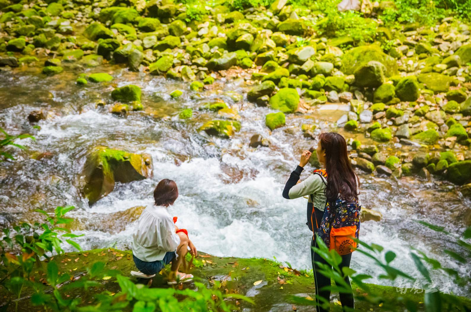 绿树,碧水,清凉,一条顶级的徒步避暑峡谷,暑假走起