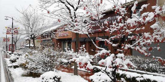 2018立冬前一场大雪 让照金小镇美如童话