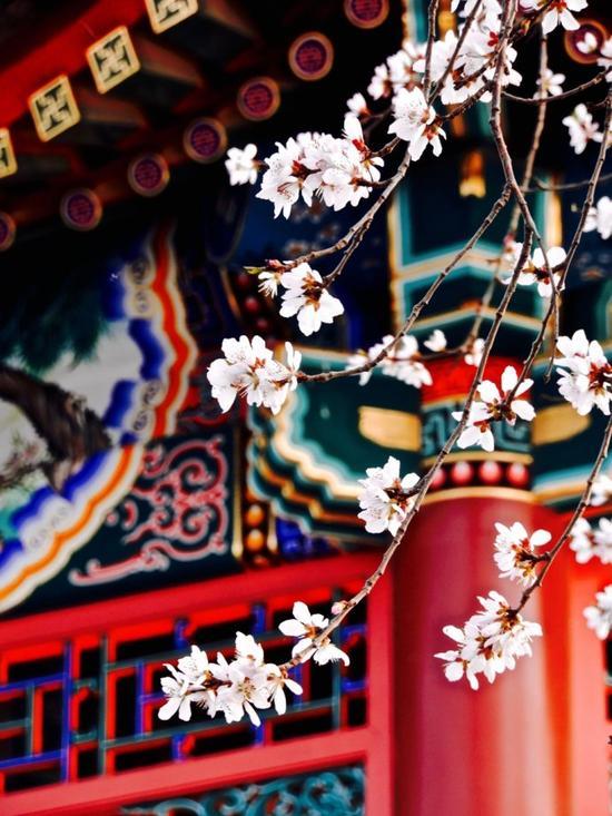 15张图让你爱上皇家范儿十足的颐和园