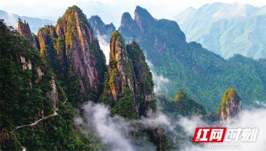 本次文化旅游节开幕式举办地——郴州莽山。宜章县委宣传部供图