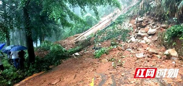 7月9日,岣嵝峰国家森林公园通景公路塌方,现已闭园。衡阳市文化旅游广电体育局供图