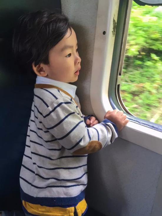坐火车去旅行 高山茶园火车上的旅行