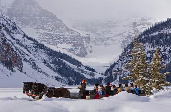 游客在艾伯塔班夫国家公园的露易丝湖上乘坐马拉雪橇