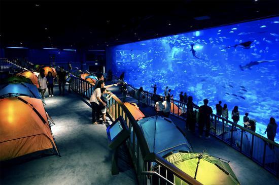新加坡S.E.A.海洋馆年度万圣节狂欢来袭,夜宿限时开启