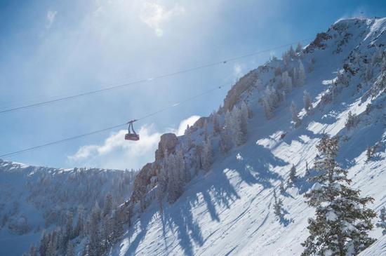 雪鸟滑雪度假村( Ski Snowbird)©Scott Markewitz