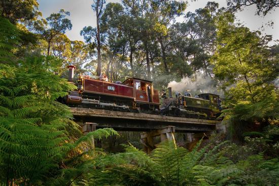 蒸汽小火车在木桥上行驶