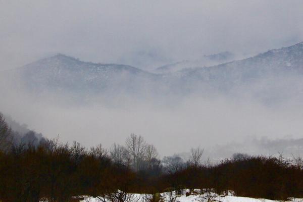 一场三月春雪 把吕梁山河大地浸染成一副中国水墨画