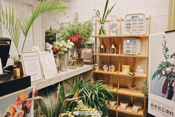 花匠与花  被鲜花簇拥的一家咖啡甜品店