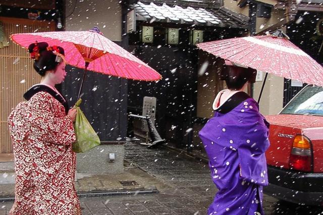 京都赏樱 漫步花见小路