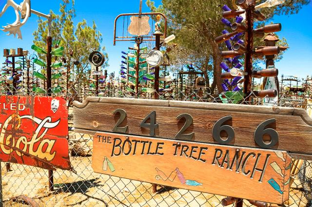 美国瓶树农场