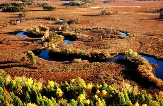 漠河九曲十八湾国家湿地公园