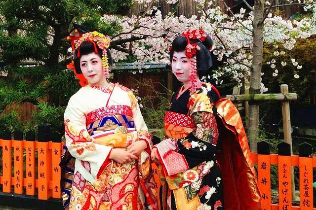 京都祗园 樱花下的舞伎