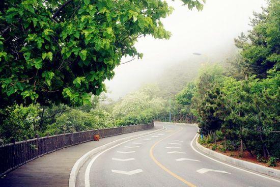 新浪旅游配图:大连滨海路风景 摄影:图片来自旅游攻略