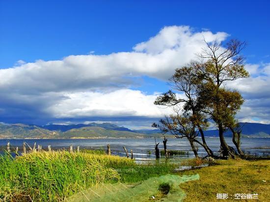 洱海边的自然风光