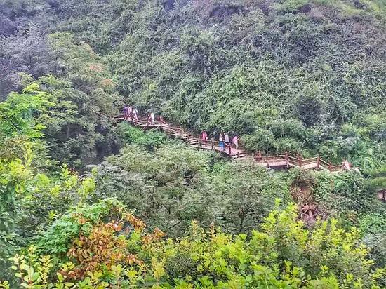 长度世界第一全木栈道和山水很好的融为一体