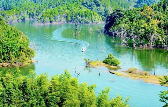 九龙湖旅游度假区