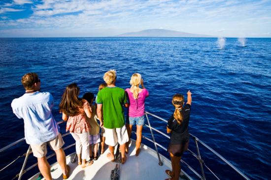 最佳观鲸景点 图片来源:夏威夷旅游局