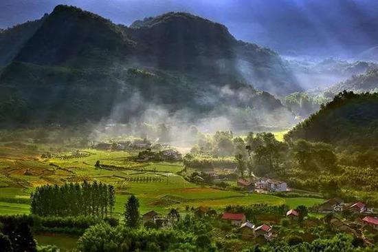 绿色阵地板桥村