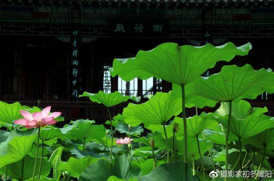 大明湖景区的雨荷厅