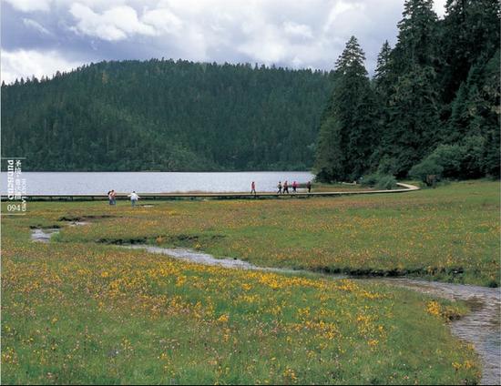 夏(图片来源:普达措国家公园供图)