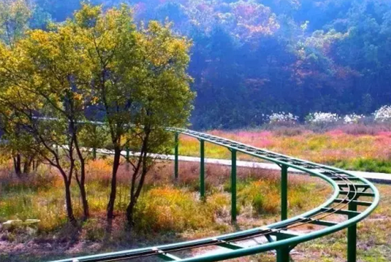 合肥最美的秋景地