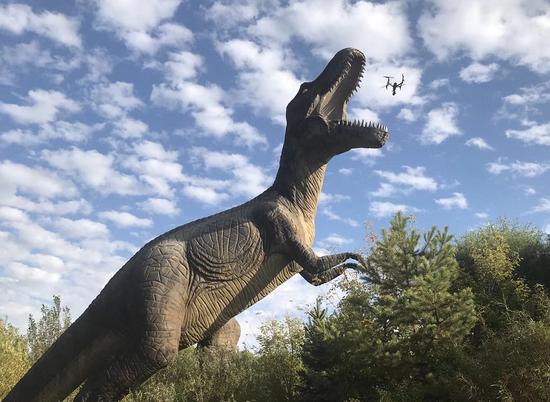 image参赛选手的无人机在嘉荫恐龙国家地址公园上空拍摄