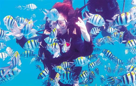 游客在分界洲岛体验潜水项目。水木 摄
