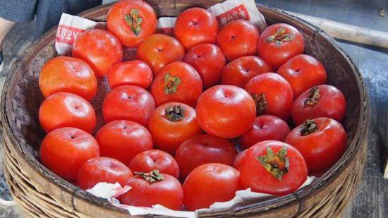 熟透的柿子清甜无比 图:卢晓燕