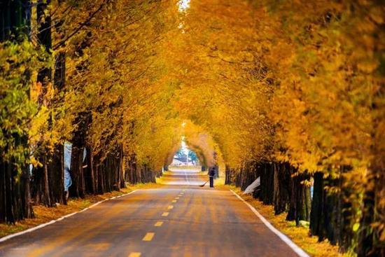 安徽S218沿线美景来袭 承包你对皖南的所有期待