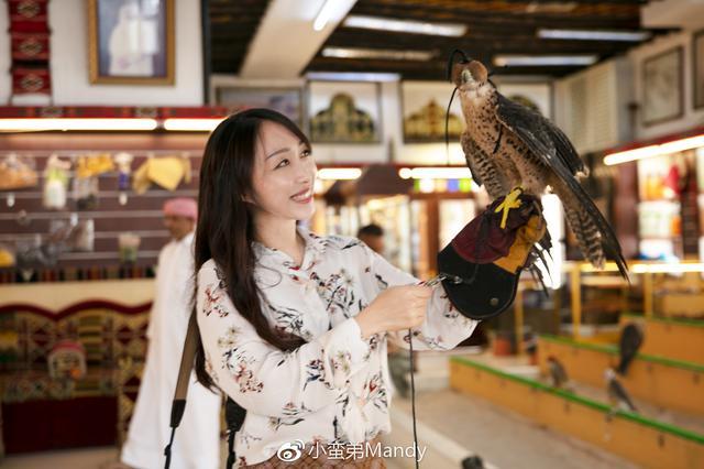 小姐姐玩儿鹰 揭秘卡塔尔