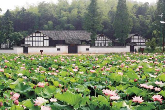 60多名华裔学子寻访周立波故居