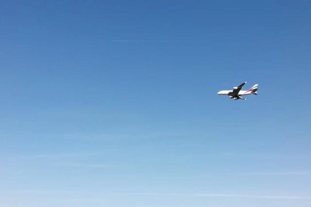 全球航空超过30家停飞 2020年客运收入损失高达1130亿美元