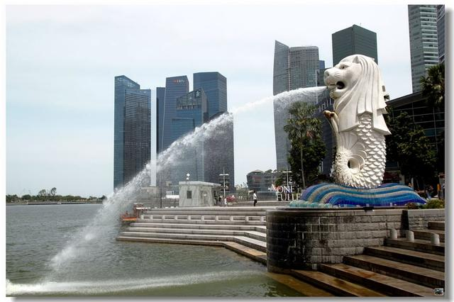 """驻新加坡使馆疫情期间以""""不见面""""方式受理证件申请"""