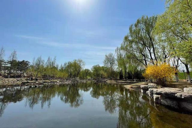 北京首個森林城市主題公園建成開放