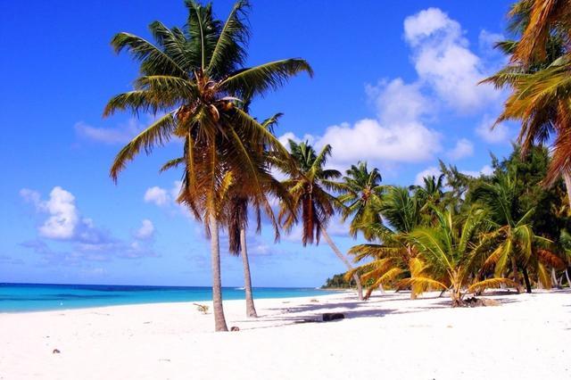 海南有望成为全球最大旅游免税零售市场