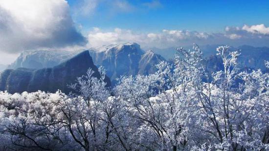 即使冻到发抖,也不能错过的的湖南最美雾凇观赏地