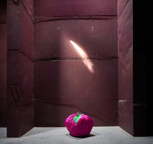 《布包》(2018),金守子,图片由艺术家和维伍德画廊提供