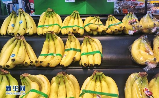 遂溪香蕉。